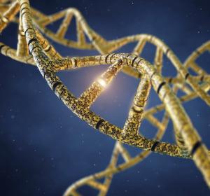 Mammakarzinom: Kostenübernahme von molekularpathologischer Genexpressionsdiagnostik kann beschleunigt werden