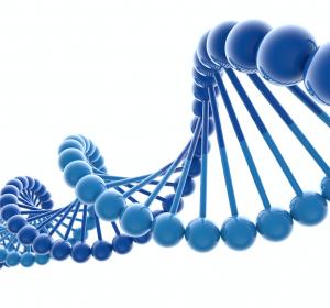 Tumor-Zelllinien bestehen häufiger als gedacht aus Subklonen