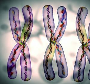 TKI-Therapie bei Philadelphia-Chromosom-positiver akuter lymphatischer Leukämie