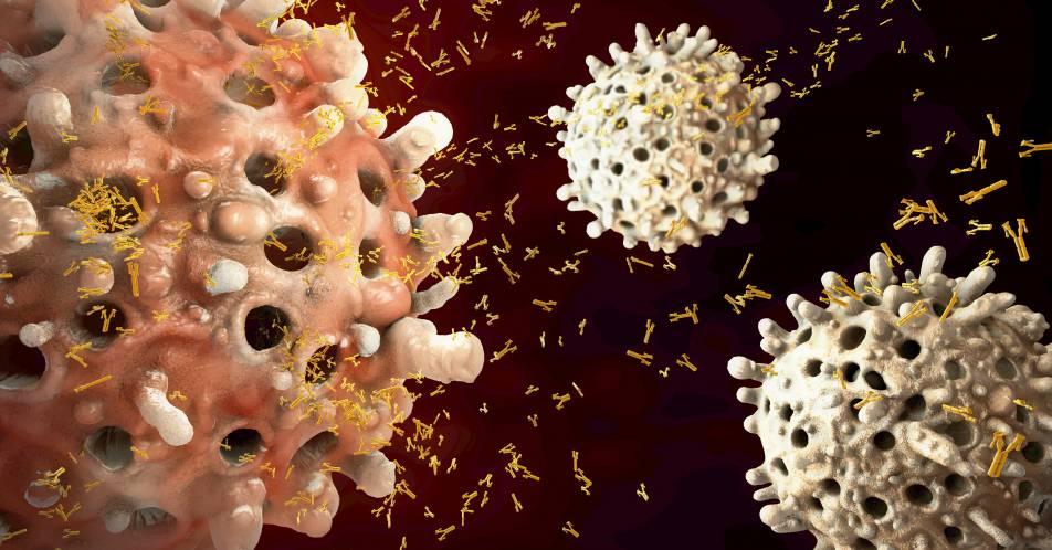 Orale+Triplett-Therapie+mit+Ixazomib+verbessert+die+Chancen+auf+eine+patientenindividuelle+Myelom-Therapie