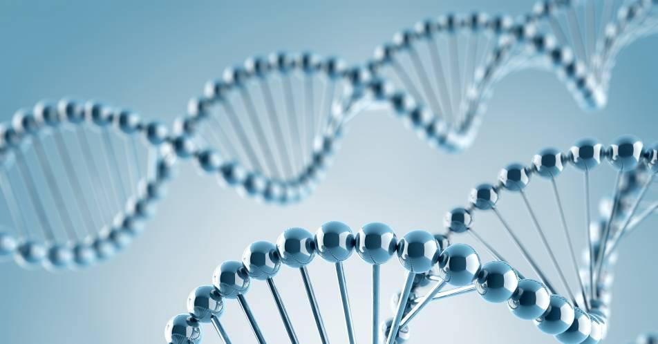 Gentherapie%3A+Alternative+zu+Virus-Transporter+f%C3%BCr+DNA+entwickelt