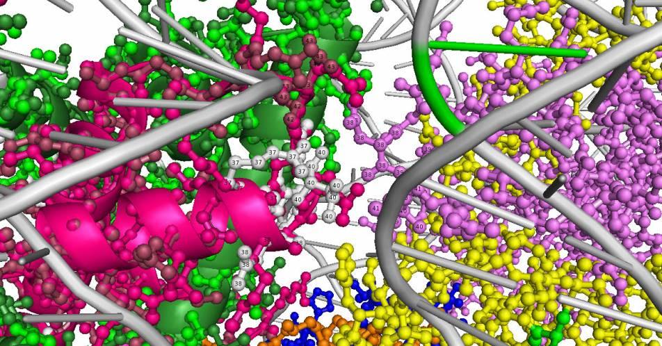 Medulloblastome%3A+Genetischer+Defekt+identifiziert+