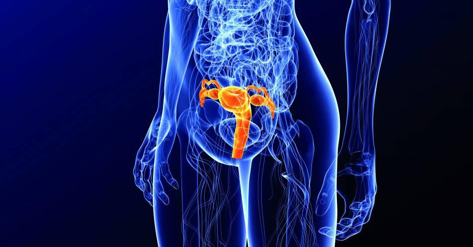 Rezidiviertes+oder+fortgeschrittenes+Endometriumkarzinom%3A+Potential+von+Dostarlimab