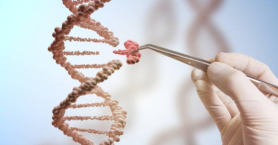 Multiples+Myelom%3A+Neuer+genetischer+Pr%C3%A4diktor+gefunden