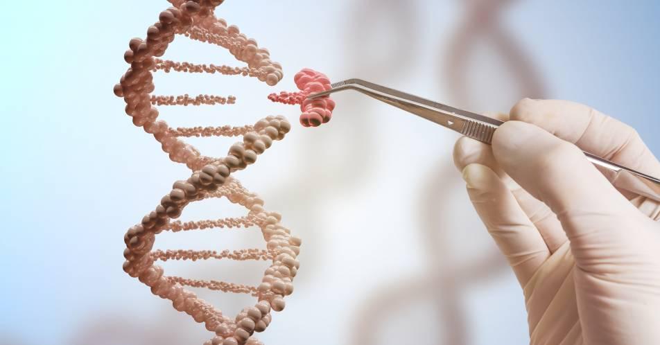 CRISPR%2FCas9+%E2%80%93+Genom+Editing+in+der+Onkologie+und+H%C3%A4matologie