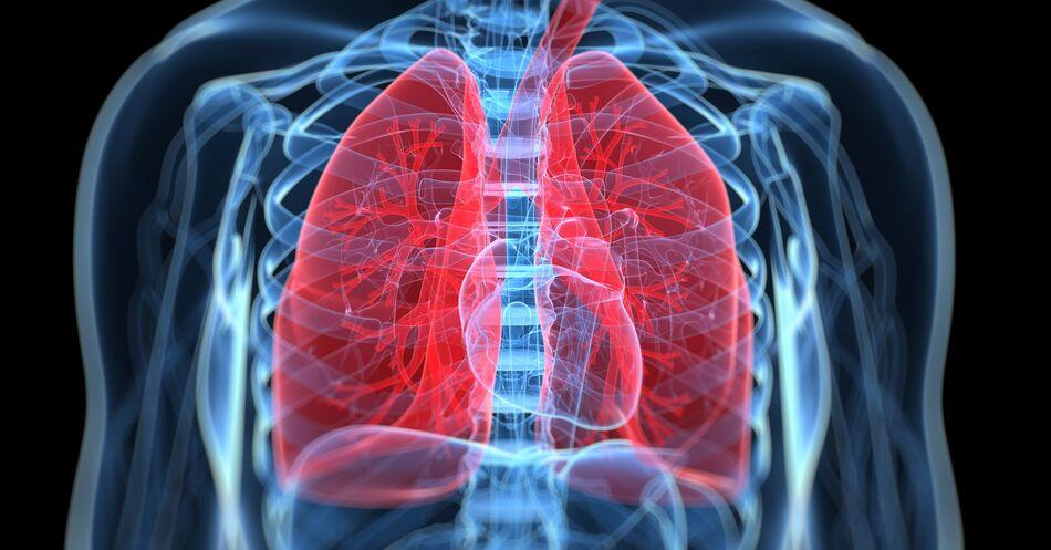 Lungen-Check+auf+R%C3%A4dern