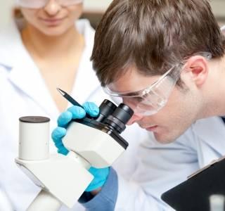 Haut+aus+dem+Labor+hilft+der+Forschung