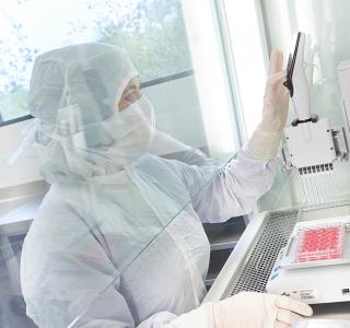 Immunologie revolutioniert die Krebstherapie
