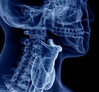 Kehlkopfentfernung – und wie geht es weiter?