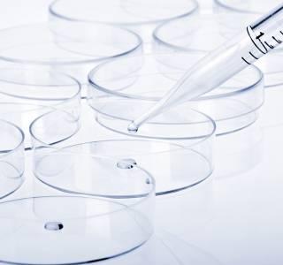 Prof. Schmoll: Große Fortschritte in der Krebsbehandlung