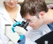 Monatsthema im Mai: Haut aus dem Labor hilft der Forschung