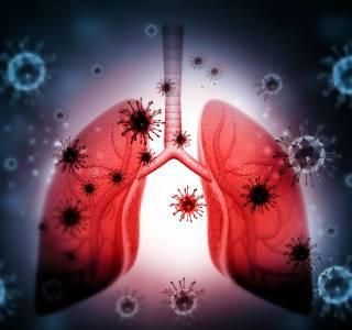 Zum Video: Webinar: Onkologische Systemtherapien während der COVID-19-Pandemie