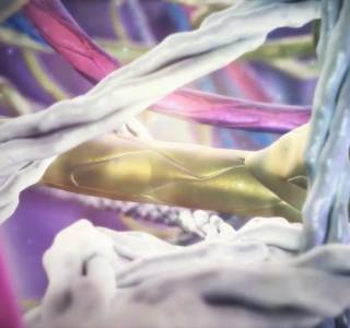 Zum Video: SCIG: Immunglobuline, die leicht unter die Haut gehen