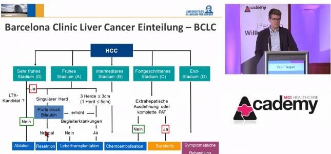 Prof.+Dr.+med.+J%C3%B6rg+Trojan%2C+Frankfurt+%2F+Prof.+Dr.+med.+Wolf+O.+Bechstein%2C+Frankfurt