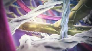 SCIG: Immunglobuline, die leicht unter die Haut gehen