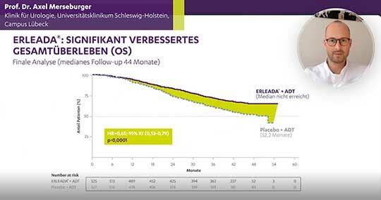 Finale Analyse Prof. Merseburger Erleada